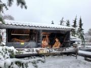 1-Snow (1)