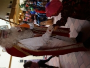 Sinterklaas2014 (5)